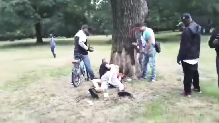 Wasted brunette bitch gets banged in the city park