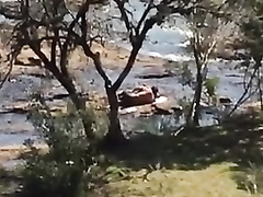 Shameless couple gets it on at the beach of a local lake